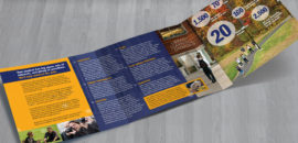 Southern New Hampshire University TriFold