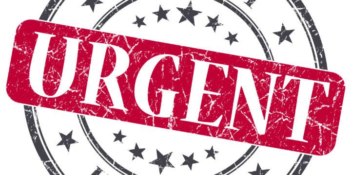 Capture Success: Creating A Sense of Urgency