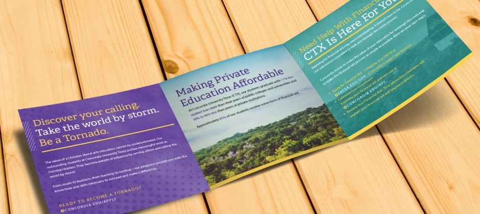 CTX Trifold Brochure