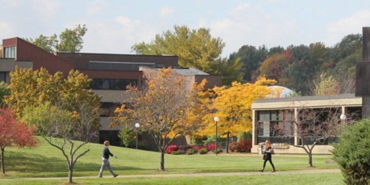 The Melting Pot and Cost Benefit of Community College